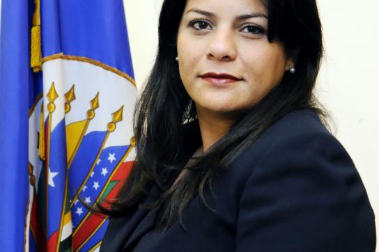 Verletzungen der Menschenrechte in Honduras offiziell